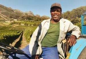 Vineyard worker sitting on his tractor smiling.